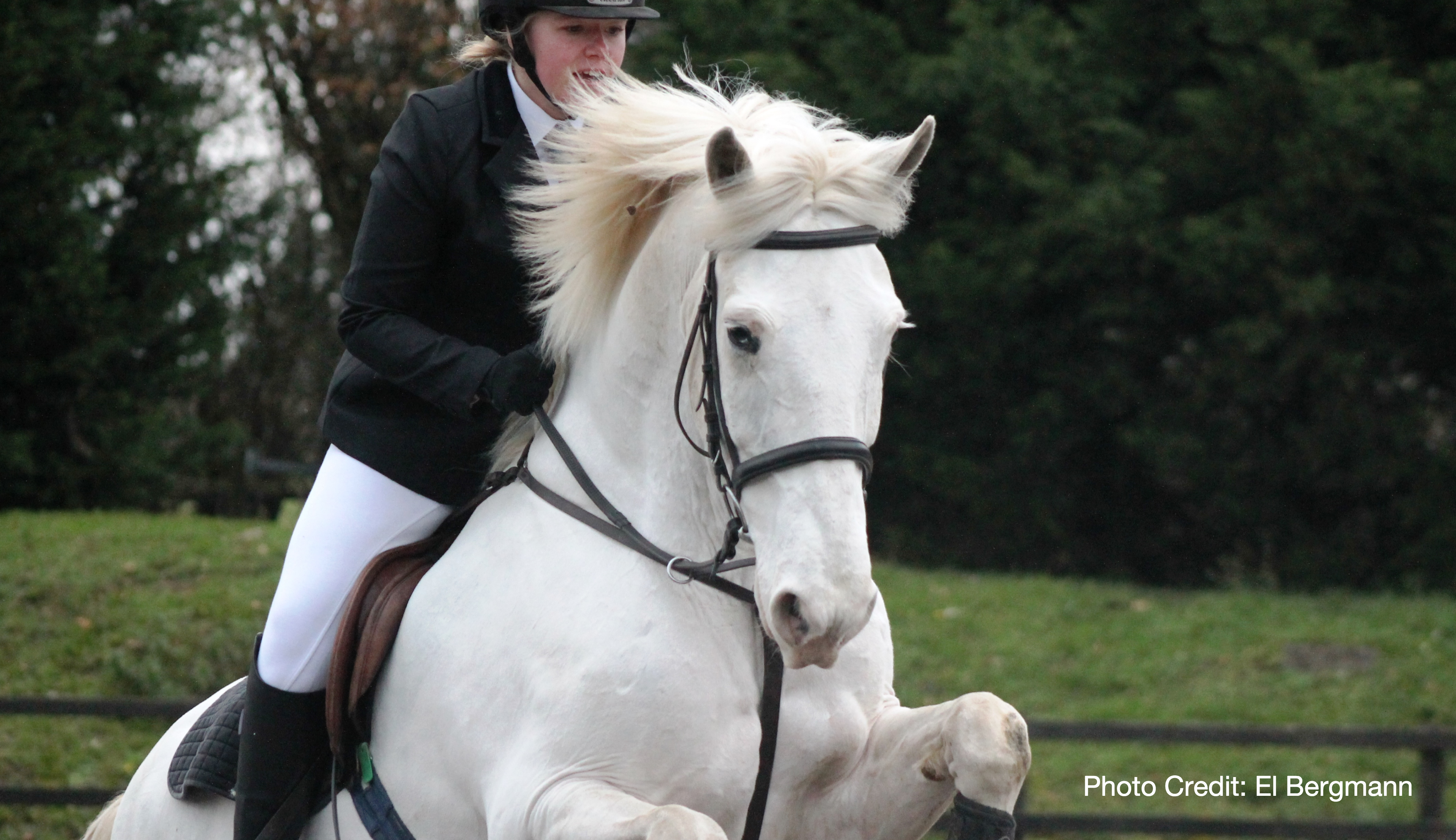 Equestrian Different Equestrian Supplies You Should Have With on